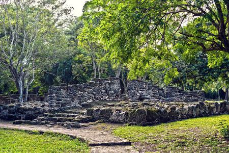 Mayan Ruins in San Gervasio,Cozumel, Mexico Stock Photo