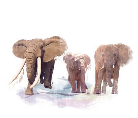 Digitaal schilderen van olifantenfamilie