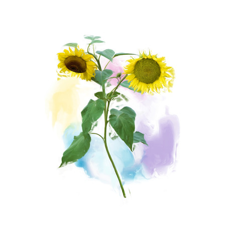 Digital painting of Two Sunflowers