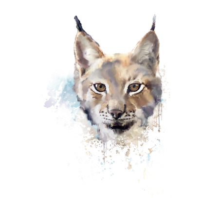 Digital Painting of Watercolor lynx.