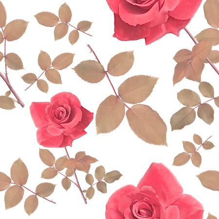 digital painting of seamless pattern with roses and leaves  Stock Photo
