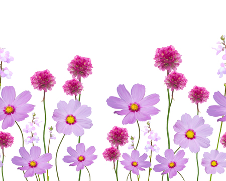 seamless floral pattern on white background Stock Photo