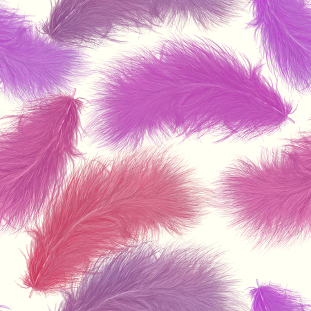 seamless   pattern of colorful feathers 스톡 콘텐츠
