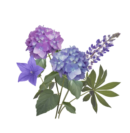Blue and purple flowers arrangement isolated on white background