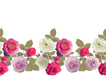 Roses border watercolor painting ,isolated on white background, Фото со стока