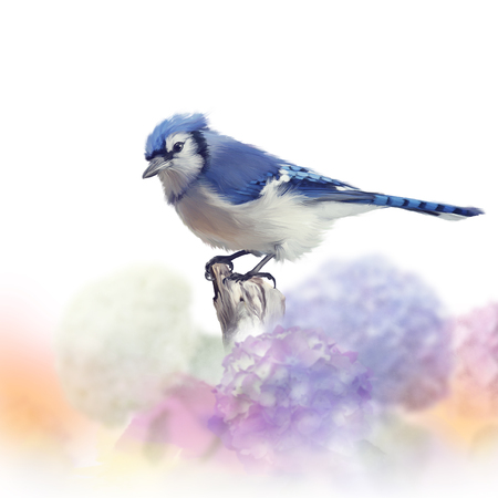 Blue jay in flower garden, watercolor painting on white background Banque d'images