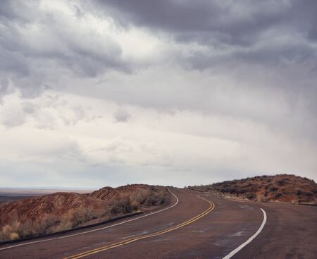 Road in Petrified Forest National Park, Arizona, United States