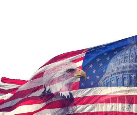 The United States Capitol, American Flag and Bald Eagle on white background 免版税图像