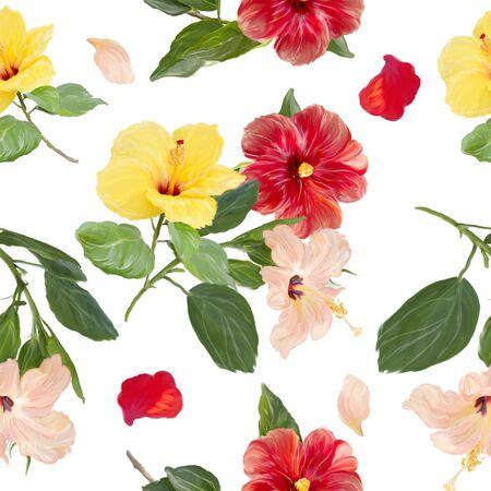 Hibiscus flowers  . Floral Pattern on white 版權商用圖片
