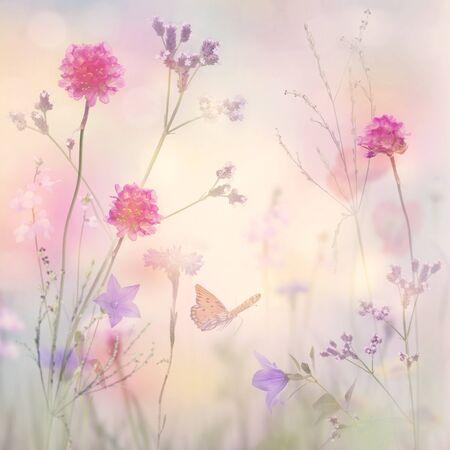 Beautiful Pastel Floral background, soft focus 版權商用圖片