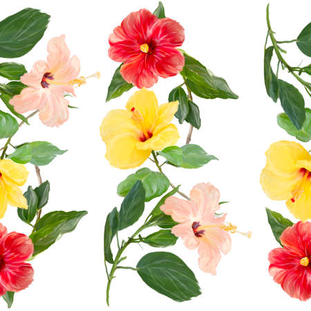 Colorful Seamless floral design for background with Hibiscus flowers
