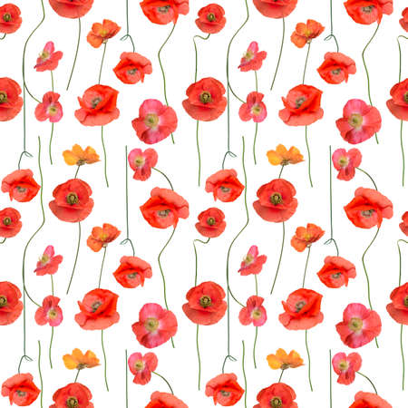 Seamless floral design with Red Poppy Flowers for background, Endless pattern.