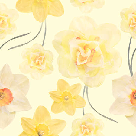Seamless floral design with daffodil  flowers for background, Endless pattern.Watercolor illustration.