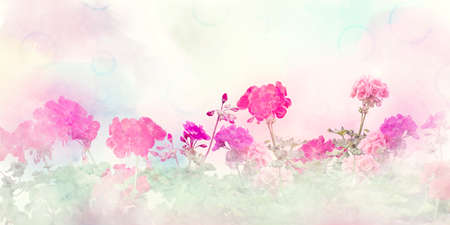 Spring floral composition made with  colorful flowers on light pastel background. Geranium flowers.