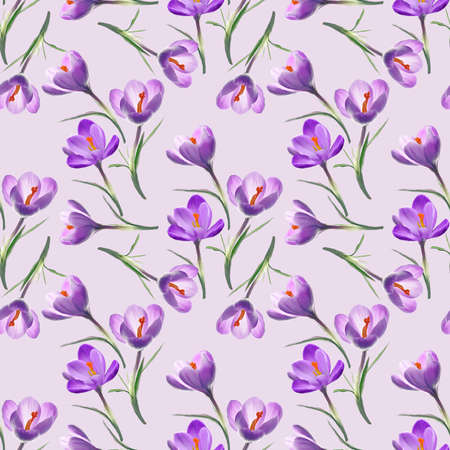 Seamless floral design with crocus flowers