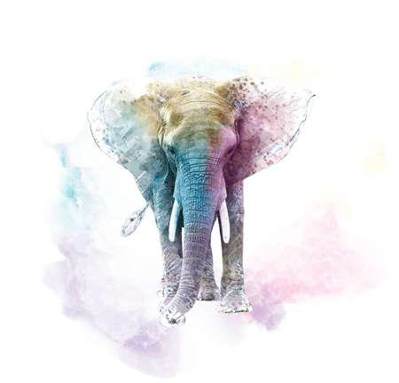 Watercolor Elephant. Digital illustration on white background.