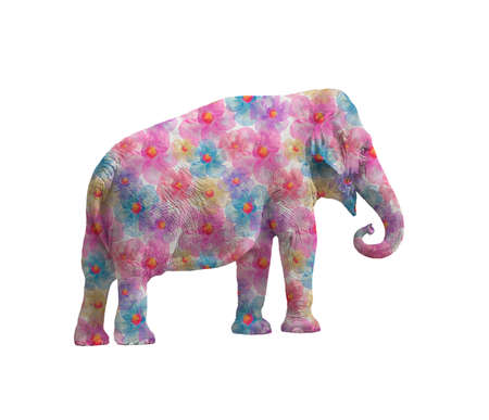 Elephant  with flowers isolated on white background, side view.