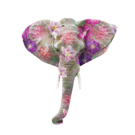 Elephant head with flowers isolated on white background 写真素材