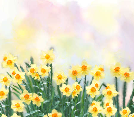 yellow daffodil flowers watercolor digital painting Banque d'images