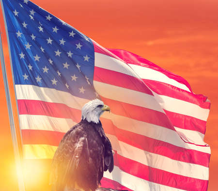 American Flag and Bald Eagle against sunset