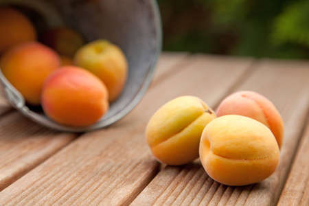 Apricots spilling out of a bucket onto a wooden garden table