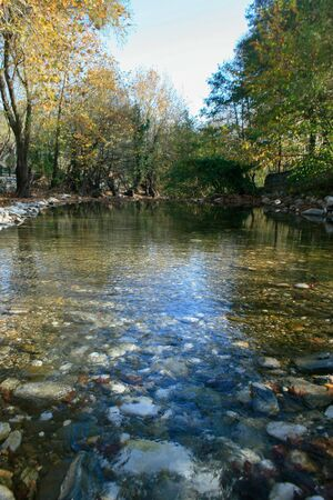 riverbank: Autumn, Forest, Green River