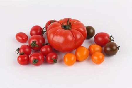 Colorful Groub of Organic Tomatoes