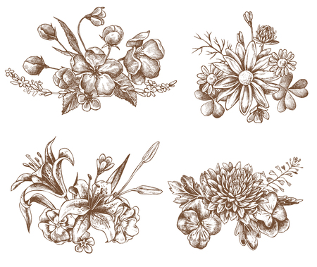 Vector collection of hand drawn heartseases, asters, primulas stock Ilustração