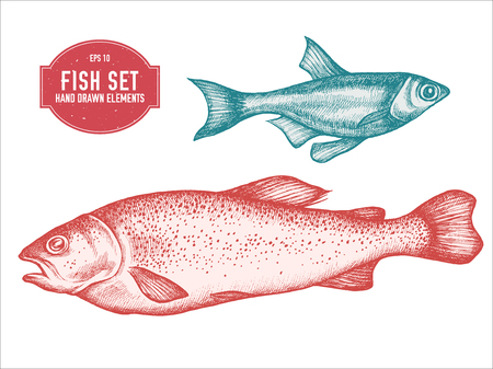 Vector collection of hand drawn pastel fish stock illustration Vectores