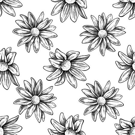 Seamless pattern with black and white chrysanths, primula stock illustration