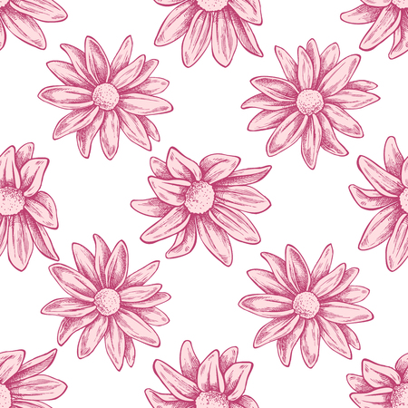 Seamless pattern with hand drawn pastel chrysanths, primula stock illustration