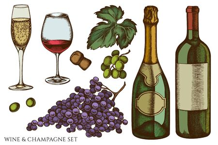 Vector set of hand drawn colored grapes, champagne, bottle of wine, glass of champagne, glass of wine Ilustracja