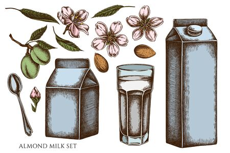 Vector set of hand drawn colored almond, glass, milk boxes, teaspoon Çizim