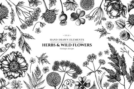 Floral design with black and white shepherd's purse, heather, fern, wild garlic, clover, globethistle, gentiana, astilbe, craspedia, lagurus, black caraway, chamomile, dandelion, poppy flower, lily of the valley, valerian angelica stock illustration Stock Illustratie