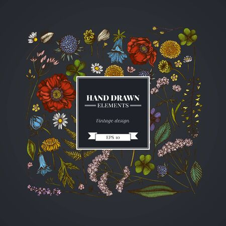 Square floral design on dark background with shepherd s purse, heather, fern, wild garlic, clover, globethistle, gentiana, astilbe, craspedia, lagurus, black caraway, chamomile, dandelion, poppy flower, lily of the valley, valerian angelica stock illustration