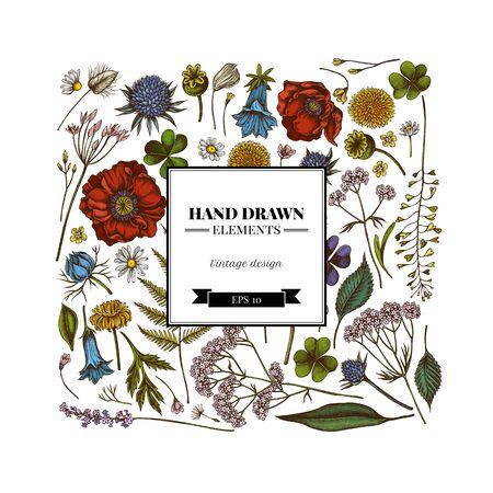 Square floral design with colored shepherds purse, heather, fern, wild garlic, clover, globethistle, gentiana, astilbe, craspedia, lagurus, black caraway, chamomile, dandelion, poppy flower, lily of the valley, valerian, angelica Иллюстрация