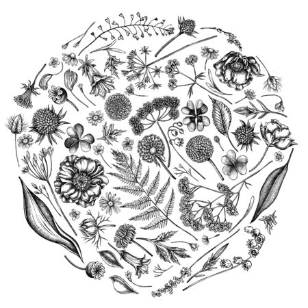 Round floral design with black and white shepherd s purse, heather, fern, wild garlic, clover, globethistle, gentiana, astilbe, craspedia, lagurus, black caraway, chamomile, dandelion, poppy flower, lily of the valley, valerian, angelica Illustration