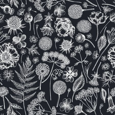 Seamless pattern with hand drawn chalk shepherds purse, heather, fern, wild garlic, clover, globethistle, gentiana, astilbe, craspedia, lagurus, black caraway, chamomile, dandelion, poppy flower, lily of the valley, valerian, angelica