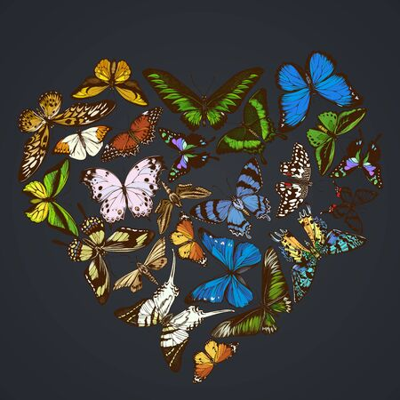 Heart design on dark background with morpho menelaus, graphium androcles, morpho rhetenor cacica, papilio demoleus, cethosia biblis, papilio antimachus, alcides agathyrsus, ornithoptera priamus, ornithoptera croesus lydius, graphium weiskei, ambulyx pryeri, theretra oldenlandiae, urania rhipheus, salamis parhassus, chorinea octauius, hebomoia glaucippe, papilio palinurus, danaus chrysippus, trogonoptera brookiana, papilio torquatus, ornithoptera goliath stock illustration 向量圖像