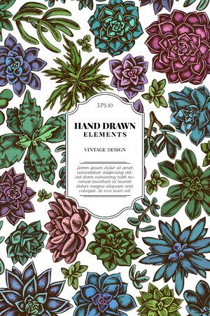 Card design with colored succulent echeveria, succulent echeveria, succulent