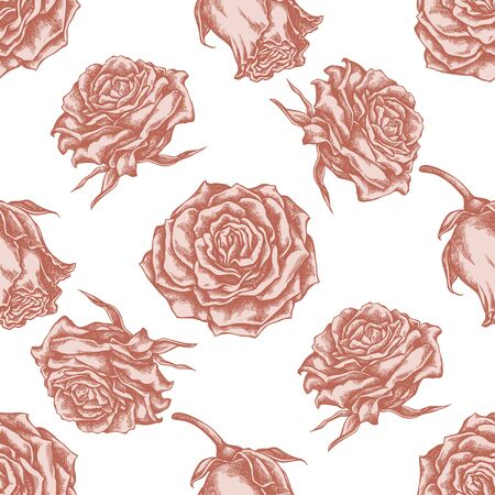 Seamless pattern with hand drawn pastel roses stock illustration