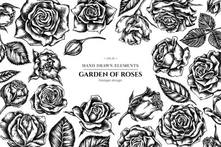 Floral design with black and white roses stock illustration