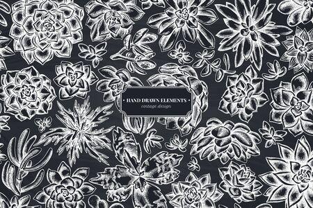 Floral design with chalk succulent echeveria, succulent echeveria, succulent stock illustration