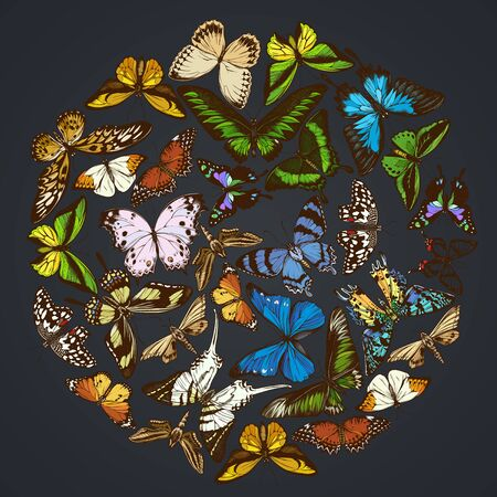 Round floral design on dark background with papilio ulysses, morpho menelaus, graphium androcles, morpho rhetenor cacica, papilio demoleus, cethosia biblis, papilio antimachus, alcides agathyrsus, ornithoptera priamus, ornithoptera croesus lydius, graphium weiskei, ambulyx pryeri, theretra oldenlandiae, urania rhipheus, salamis parhassus, chorinea octauius, hebomoia glaucippe, papilio palinurus, stichophthalma howqua, danaus chrysippus, trogonoptera brookiana, papilio torquatus, ornithoptera goliath stock illustration Ilustração