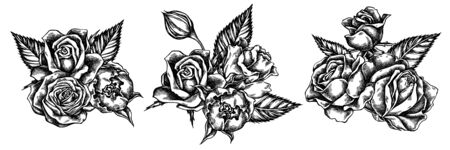 Flower bouquet of black and white roses stock illustration