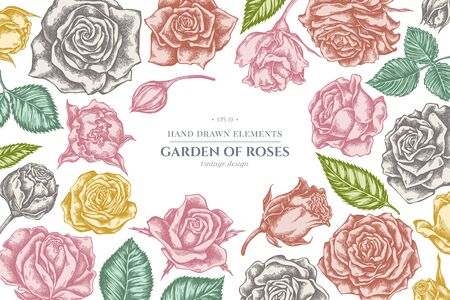 Floral design with pastel roses stock illustration Stock Illustratie