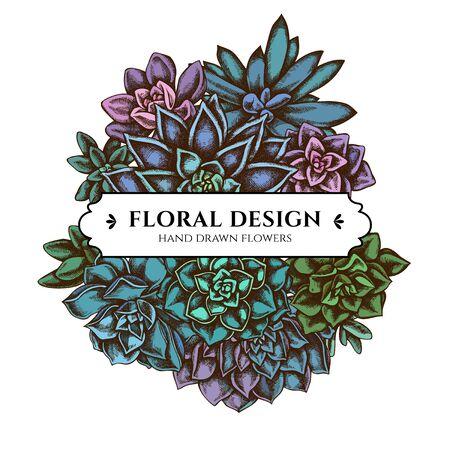 Floral bouquet design with colored succulent echeveria, succulent echeveria, succulent stock illustration