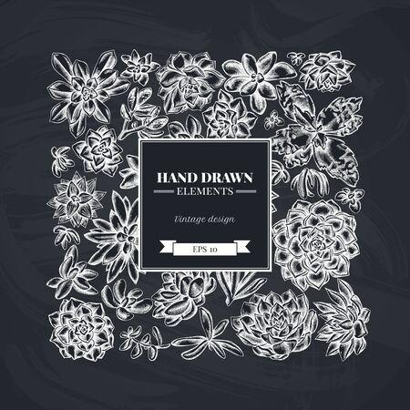 Square floral design with chalk succulent echeveria, succulent echeveria, succulent