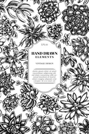 Card design with black and white succulent echeveria, succulent echeveria, succulent