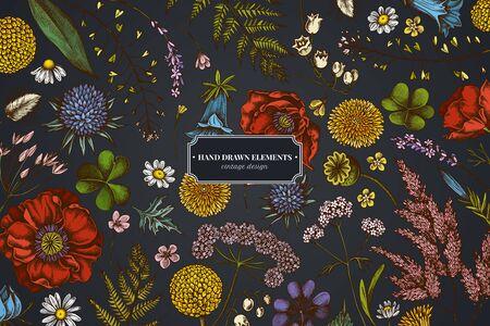 Floral design on dark background with shepherd's purse, heather, fern, wild garlic, clover, globethistle, gentiana, astilbe, craspedia, lagurus, black caraway, chamomile, dandelion, poppy flower, lily of the valley, valerian, angelica stock illustration